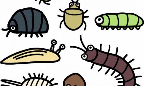 大量発生した「ダンゴムシ」は害虫!殺虫剤不要の駆除方法4つ