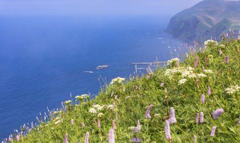 一度は訪れたい花の浮島「礼文島」の観光見どころスポット8つ