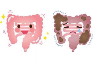 【美人は腸が作る】汚腸を改善して内面からキレイになる方法